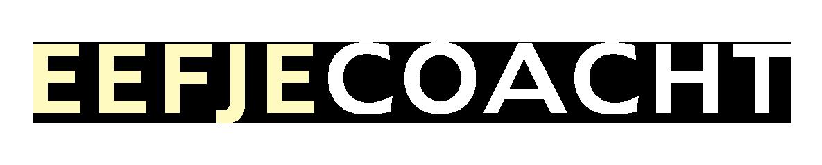 Logo kleur website 2